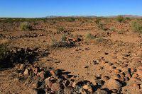 اراضي زراعية في مادبا
